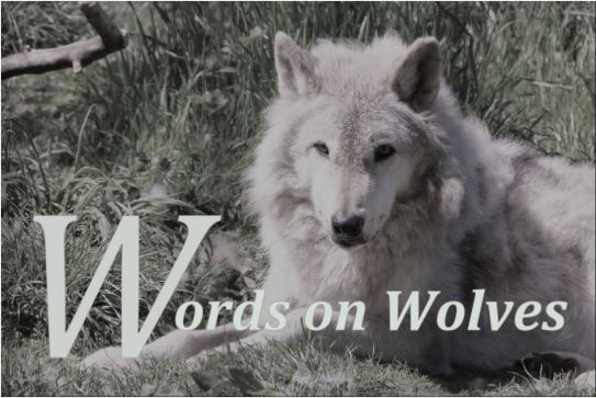 words on wolves